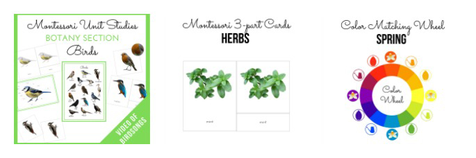 Montessori Birds Unit Study - Botany Section and Healing Herbs of our Garden