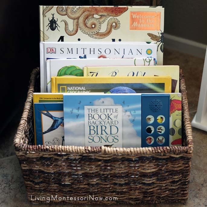Montessori Book Basket with Nonfiction Books for a Bird Unit