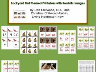 Montessori-Inspired Backyard Bird Pack