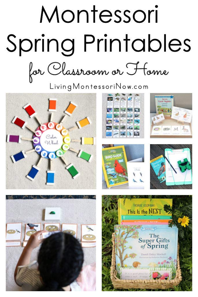 Montessori Spring Printables for Classroom or Home