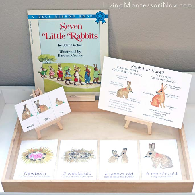 Rabbit Printables with Seven Little Rabbits Book