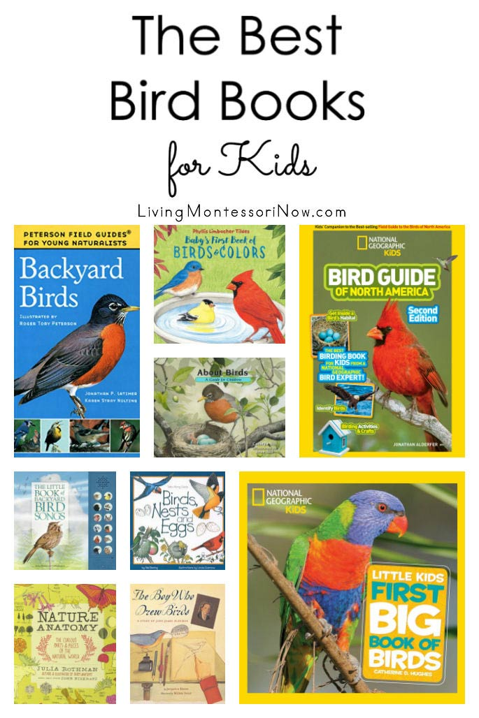 The Best Bird Books for Kids