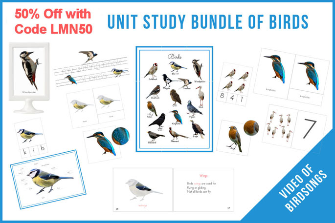 50% off with Code LMN50 - Unit Study Bundle of Birds
