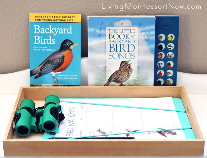 Backyard Bird Books and Birdwatching Tray