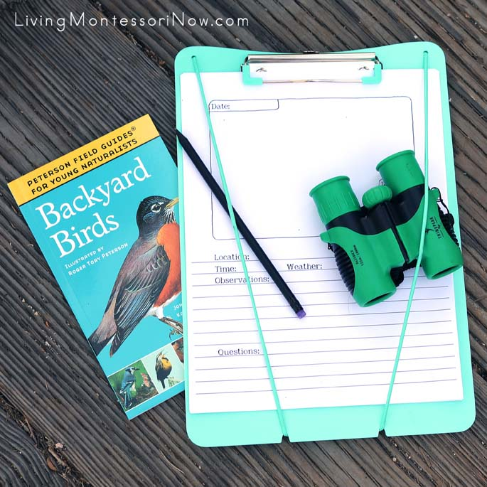 Birdwatching Materials - Backyard Birds Book, Nature Journaling Pages, Pencil, Binoculars, and Clipboard