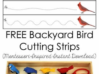 FREE Backyard Bird Cutting Strips (Montessori-Inspired Instant Download)
