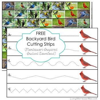 Free Backyard Bird Cutting Strips
