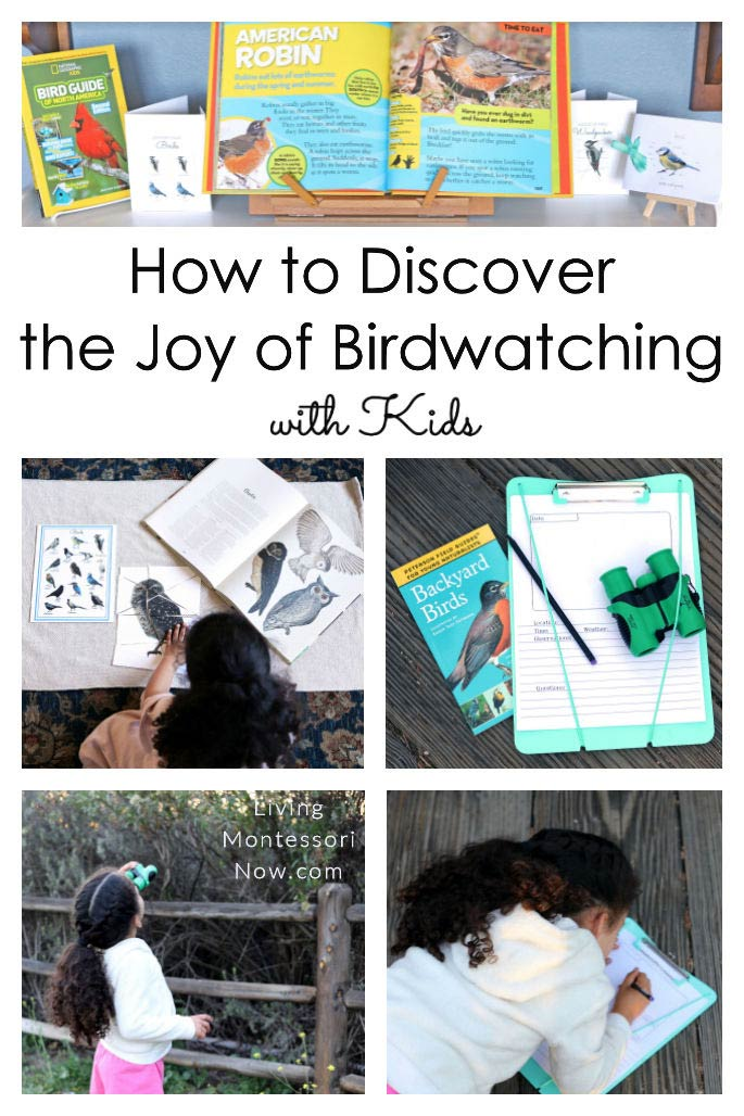 How to Discover the Joy of Birdwatching with Kids