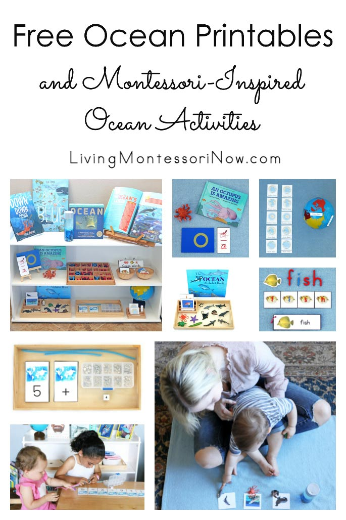 Free Ocean Printables and Montessori-Inspired Ocean Activities