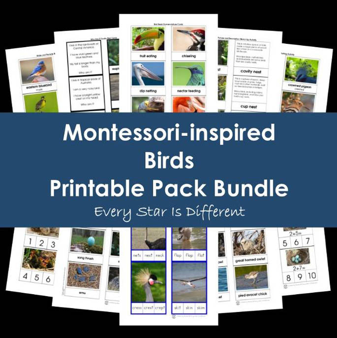 Montessori-Inspired Birds Printable Pack Bundle from Every Star Is Different