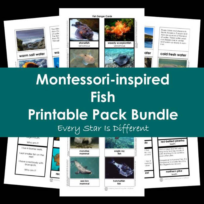 Montessori-Inspired Fish Printable Pack Bundle from Every Star Is Different