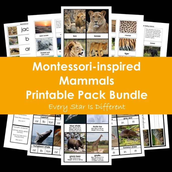 Montessori-Inspired Mammals Printable Pack Bundle from Every Star Is Different