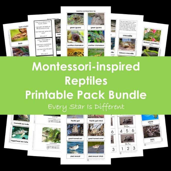 Montessori-Inspired Reptiles Printable Pack Bundle