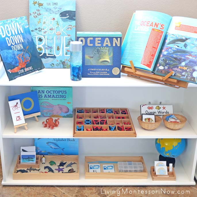 Montessori Shelves with Ocean-Themed Activities