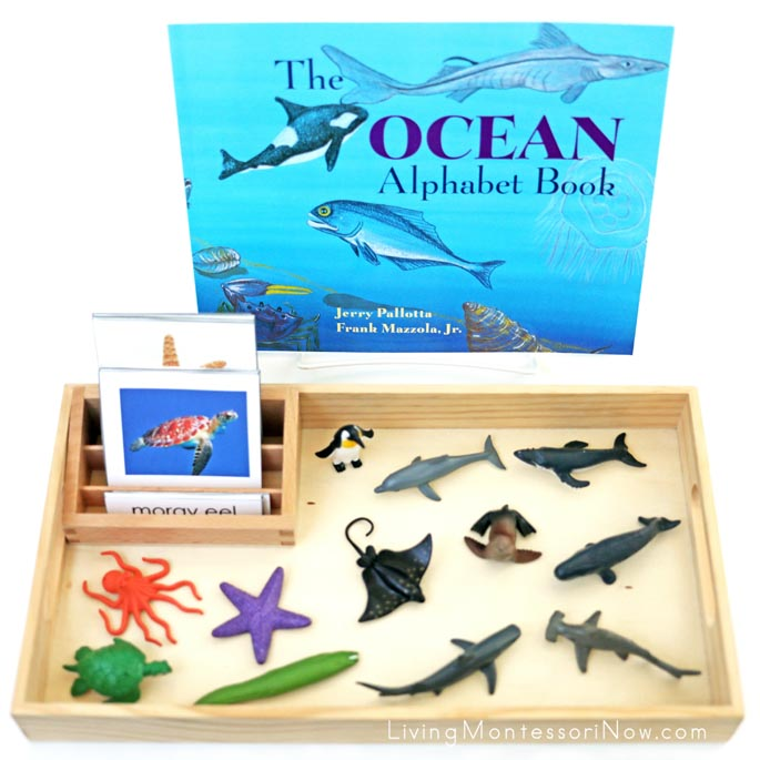 The Ocean Alphabet Book with Ocean Animal 3-Part Cards and Safari Ltd Ocean TOOB Animals
