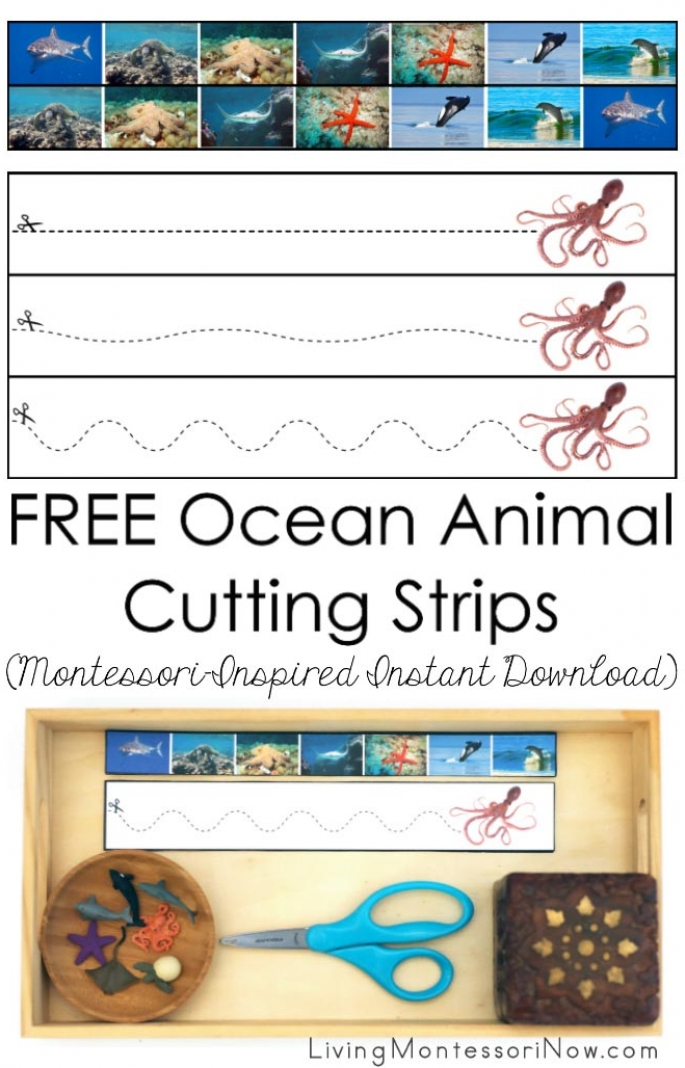 FREE Ocean Animal Cutting Strips (Montessori-Inspired Instant Download)