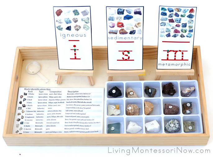 Igneous, Sedimentary, and Metamorphic Sorting Tray with Font Cards