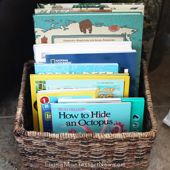 Montessori Book Basket with Books for an Ocean Unit