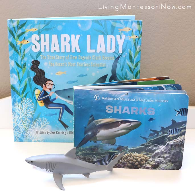 Shark Lady Book, American Museum of Natural History's Shark Board Book, and Schleich Shark
