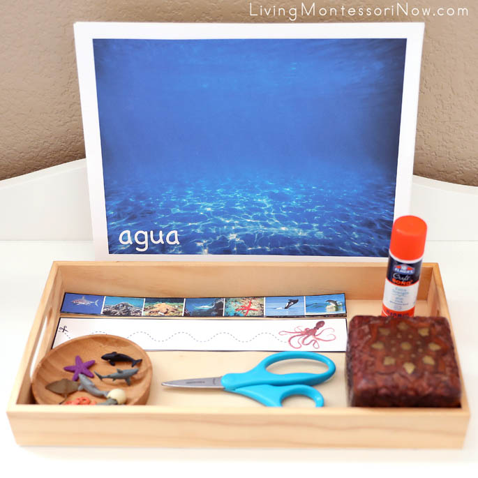 Spanish Water Mat and Ocean Animal Cut-and-Paste Activity