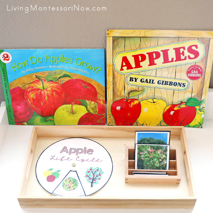 Apple Books with Apple Life Cycle Work