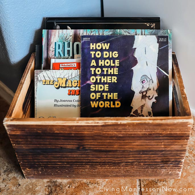 Book Basket with Rocks and Minerals Books