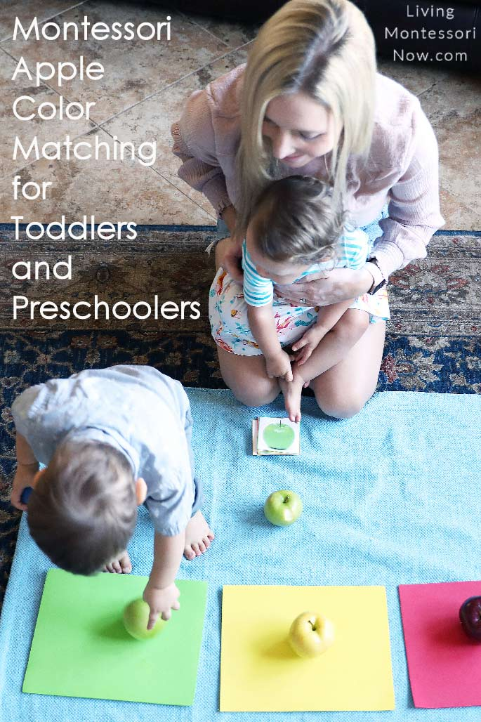 Montessori Apple Color Matching for Toddlers and Preschoolers