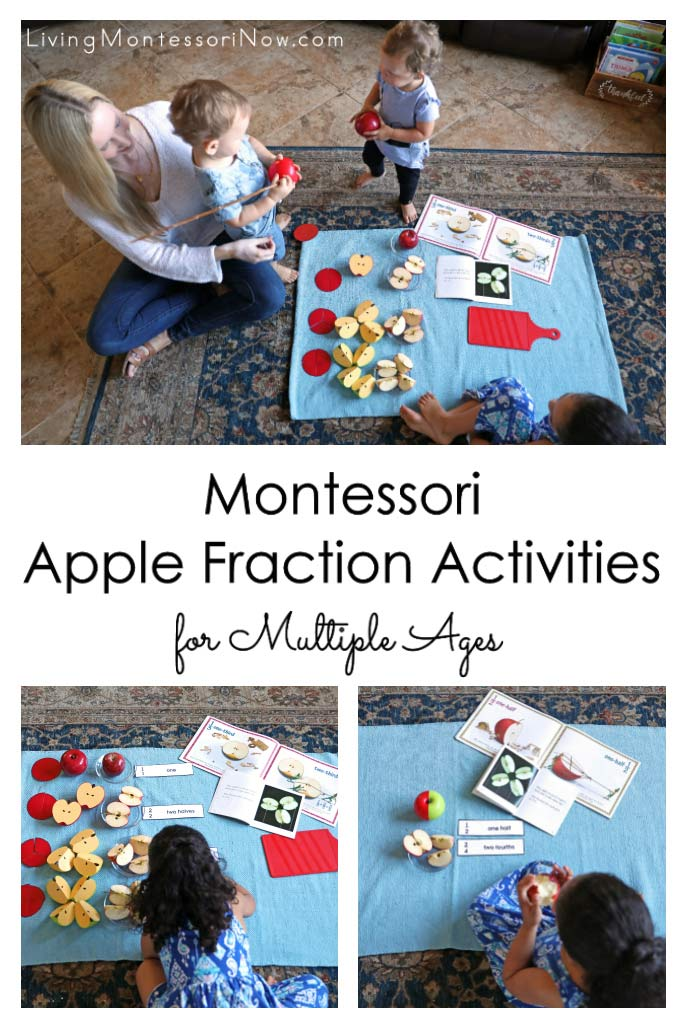 Montessori Apple Fraction Activities for Multiple Ages