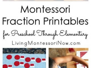Montessori Fraction Printables for Preschool Through Elementary