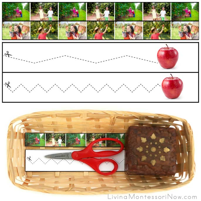 Apple Cutting Strips with Basket