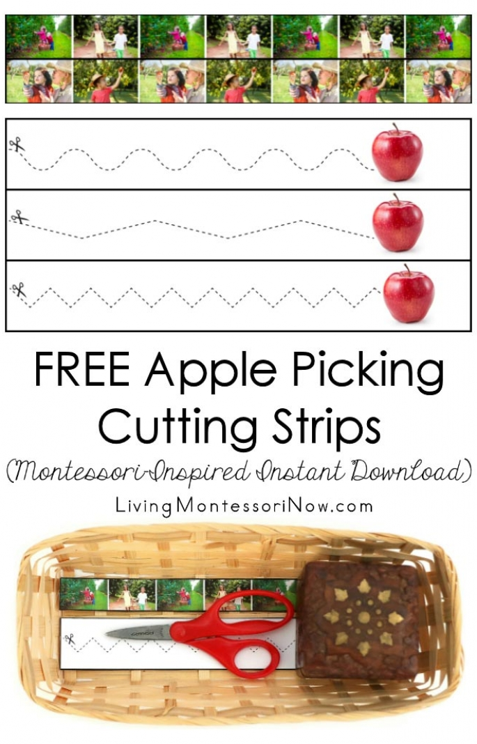 FREE Apple Picking Cutting Strips (Montessori-Inspired Instant Download)