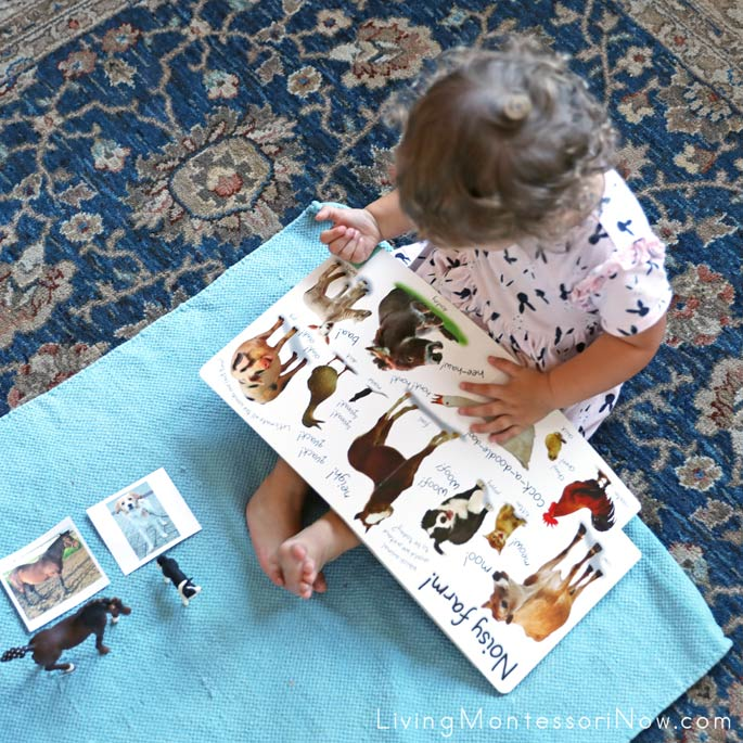 Looking at the Farm: Let's Get Working! Book After Farm Animal Matching Activity