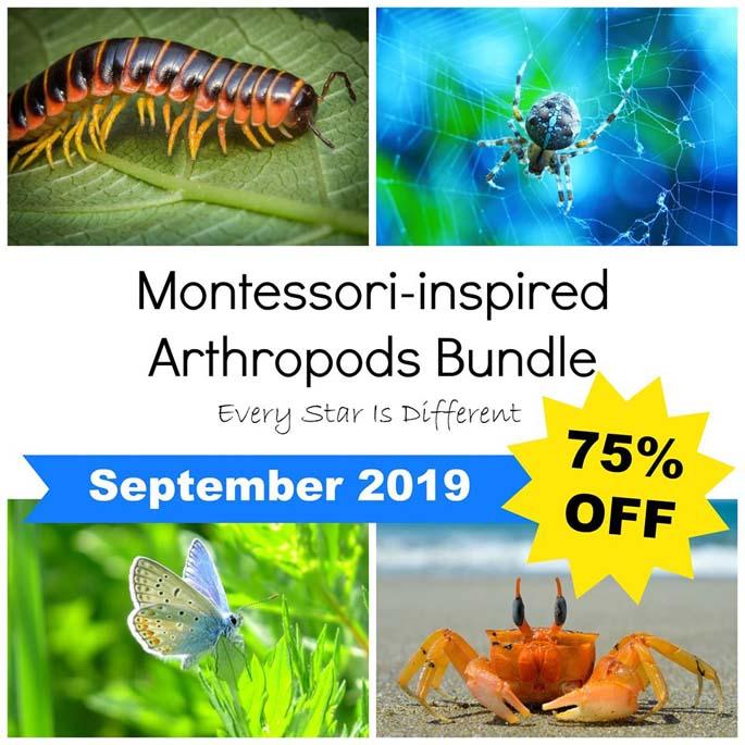 Montessori-Inspired Arthropods Bundle 75% Off During September