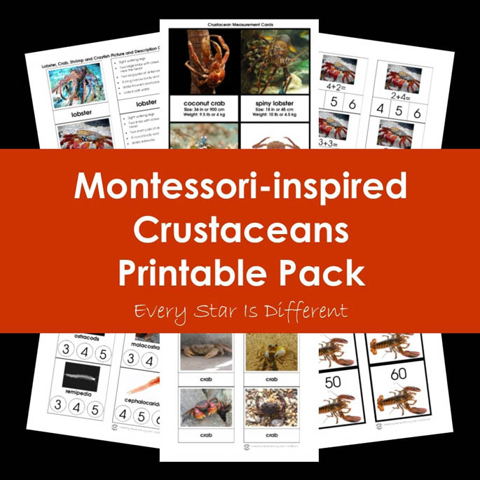 Montessori-Inspired Crustaceans Printable Pack from Every Star Is Different