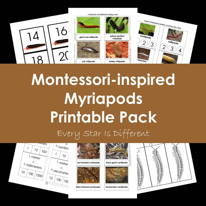 Montessori-Inspired Myriapods Printable Pack from Every Star Is Different