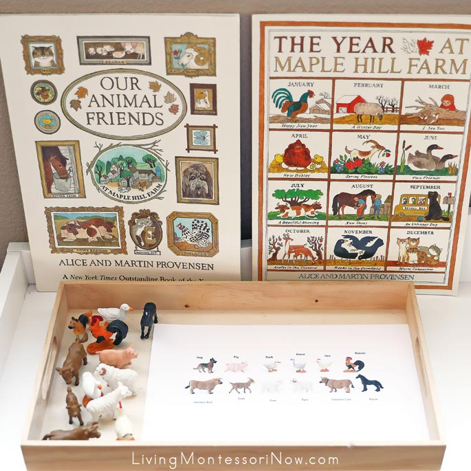 Safari Ltd Farm Animals and Key with Maple Hill Farm Books