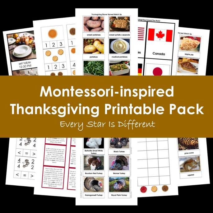 Montessori-Inspired Thanksgiving Printable Pack from Every Star Is Different