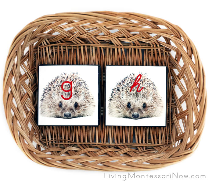 Basket with Hedgehog Manuscript and Cursive Alphabet Cards