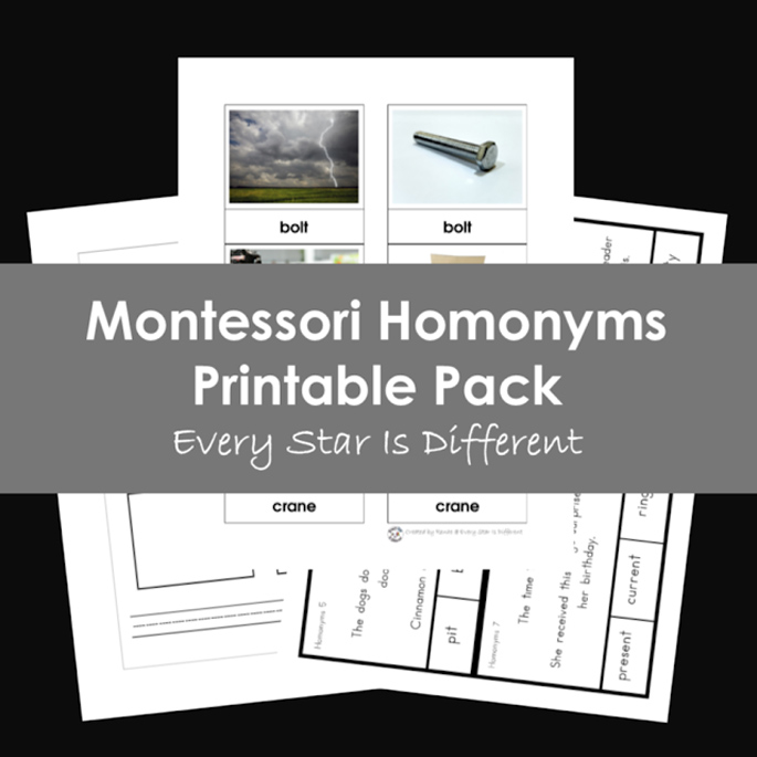 Montessori Homonyms Printable Pack from Every Star Is Different