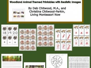 Montessori-Inspired Woodland Animal Pack