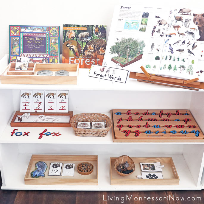Montessori Shelves with Woodland Animal Activities for Preschool Through 1st Grade