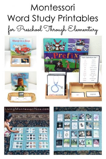 Montessori Word Study Printables for Preschool Through Elementary