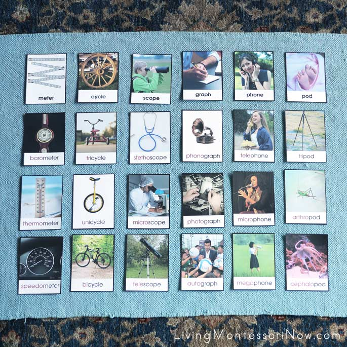 Prefix Picture Sorting Cards Layout