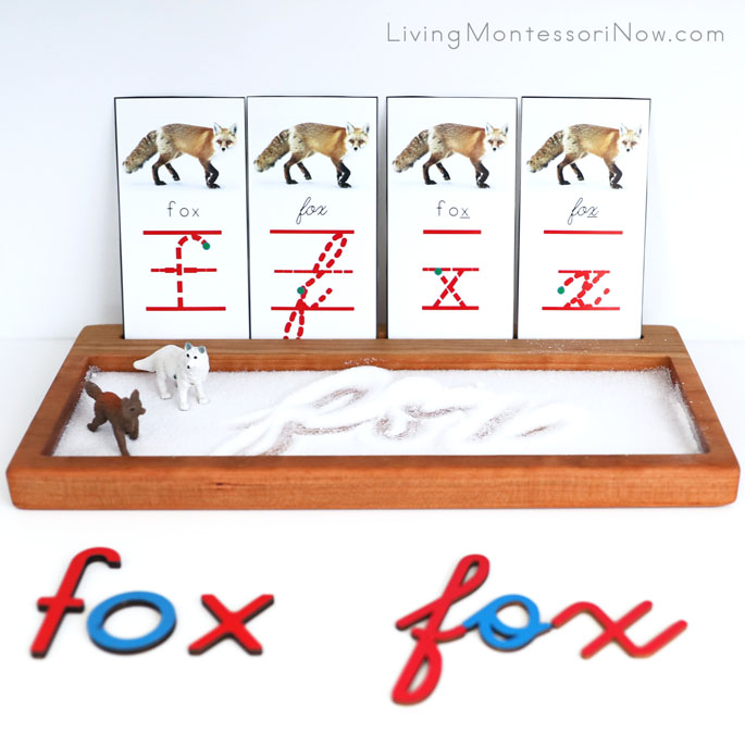 Salt Writing Tray with Fox f and x Font Cards and Safari Ltd Fox Figures
