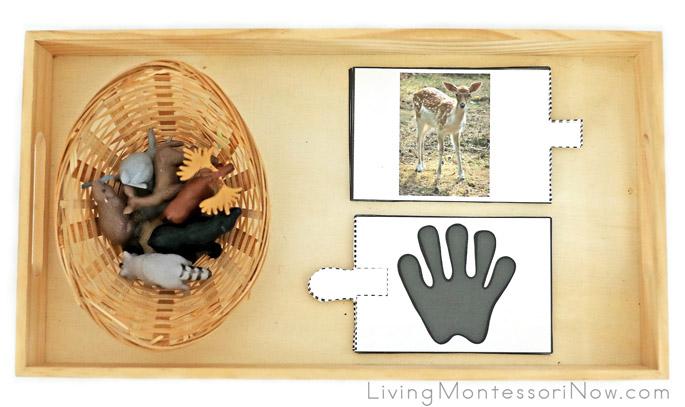 Tray with Safari Ltd Animal Figures and Woodland Animal Track Puzzles