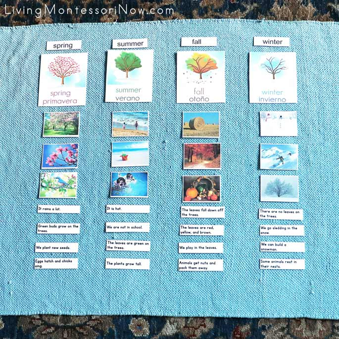 Seasons Sorting and Reading Activity in English and Spanish