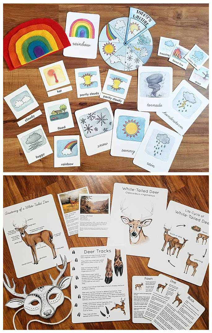 Weather Study and White-Tailed Deer Study Printables from Steph Hathaway Designs on Etsy
