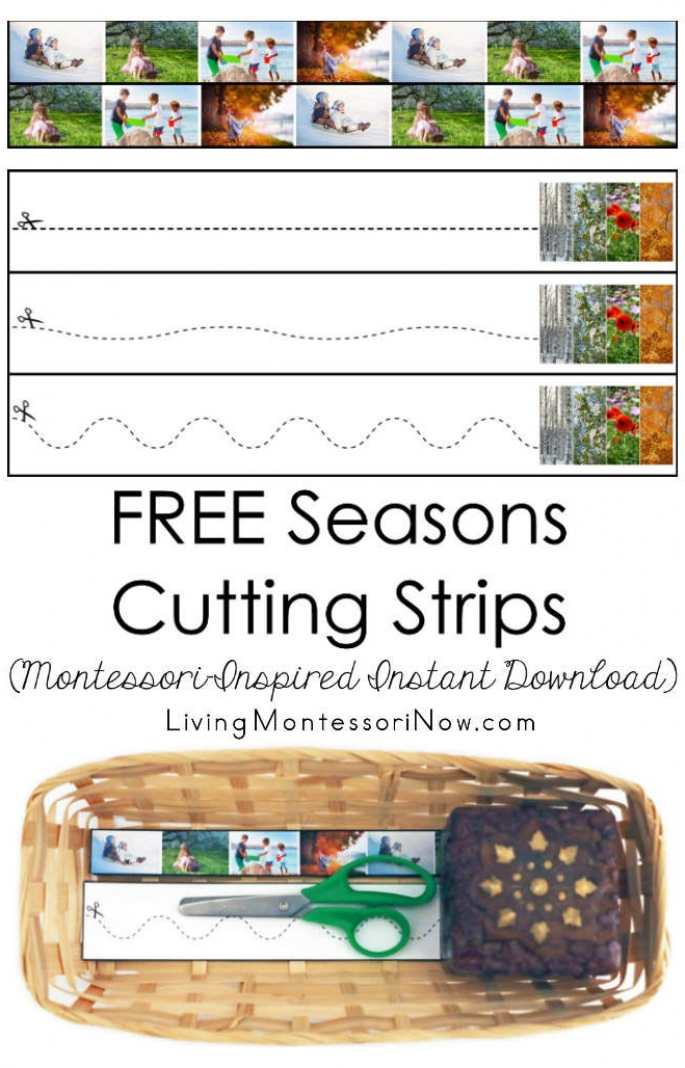 FREE Seasons Cutting Strips (Montessori-Inspired Instant Download)