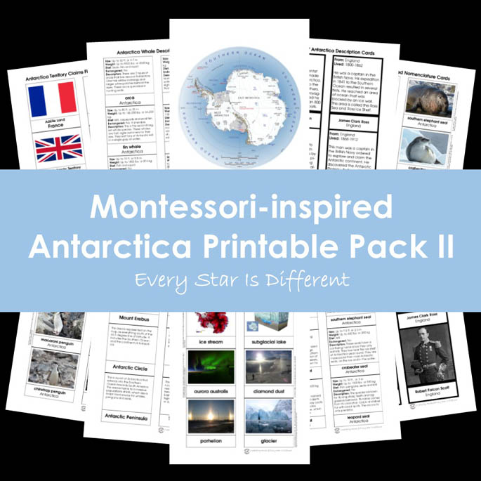 Montessori-Inspired Antarctica Printable Pack II from Every Star Is Different