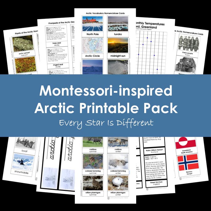 Montessori-Inspired Arctic Printable Pack from Every Star Is Different